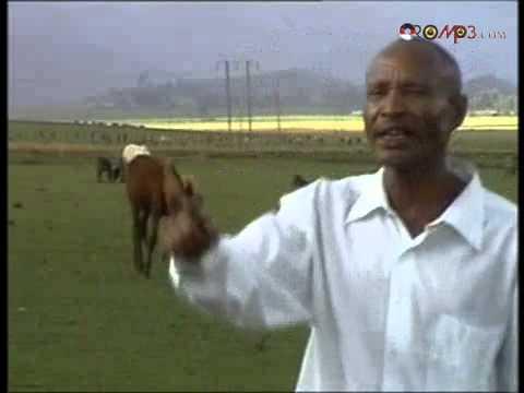 Fandishe Mullata (Oromo Music) - Sumaani Booya