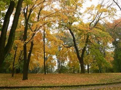 Csalogató együttes: Itt van az ősz, itt van újra