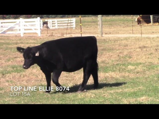 Top Line Farm Lot 15A