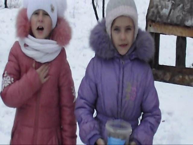 Изображение предпросмотра прочтения – НатальяСтрук читает произведение «Покормите птиц зимой» А.Я.Яшина