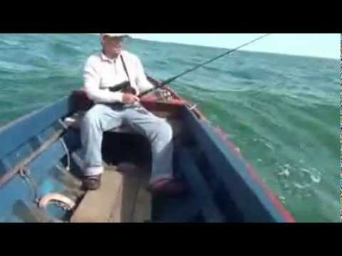 Mancing  Pancing Fishing at Celebes Sea -