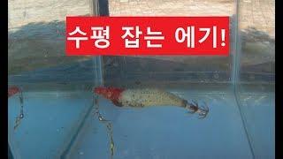 갑오징어 낚시 에기를 분석해보자!