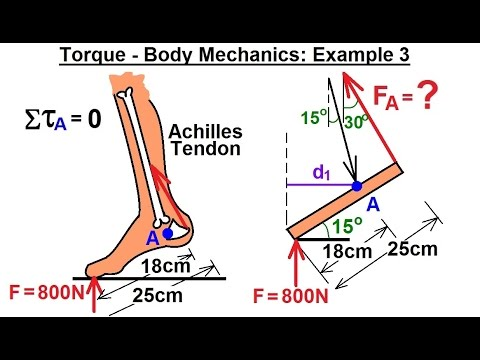 Physics - Mechanics: Ch 15 Torque (15 of 27) Body Mechanics: Ex. 3, F=? on Achilles Tendon***