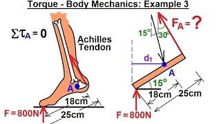 Physics - Mechanics: Ch 15 Torque (15 of 27) Body Mechanics: Ex. 3, F=? on Achilles Tendon***