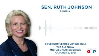 Sen. Johnson joins Michigan's Big Show to talk election reform vetoes