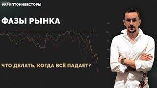 Фазы рынка. Что делать, когда всё падает?