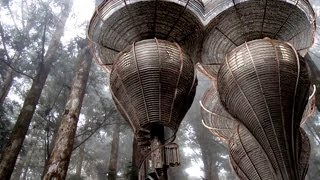 Incredibly Futuristic Treehouse