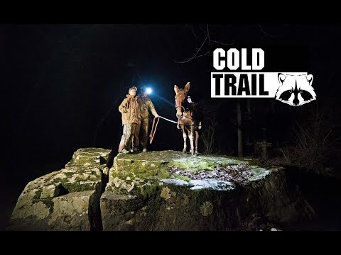 Cold Trail | Using Mules For Raccoon Hunting In The Ozarks