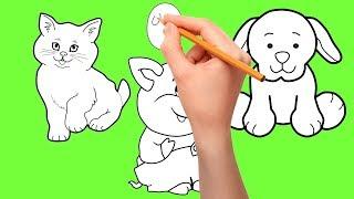 уроки малювання - як намалювати кота собаку свиню