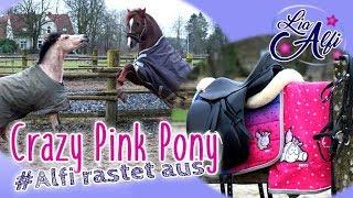 Lia & Alfi - Crazy Pink Pony - Alfi rastet aus