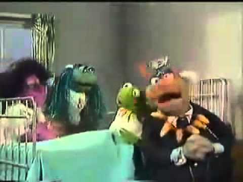 Kermit the Frog - Lime in the Coconut