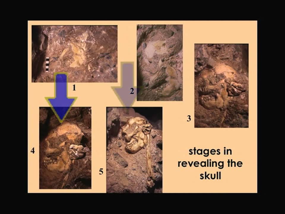 Menetelmä dating kiviä ja fossiileja