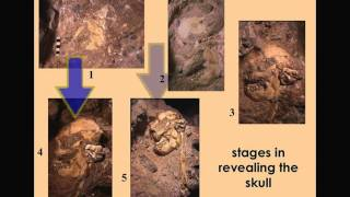 """CARTA: Early Hominids: Ronald Clarke - """"Little Foot"""", Big Find - A Skeleton of Australopithecus"""