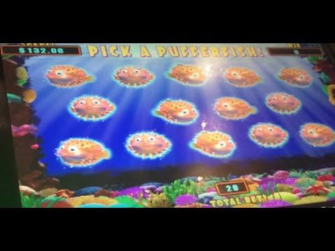 *** HIGH LIMIT *** LIVE PLAY on Lucky Lion Fish Slot Machine with Bonus