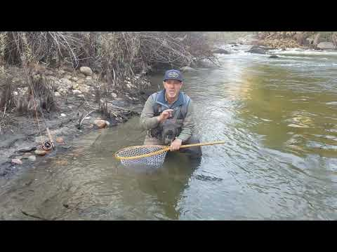 Lower Kern River Fly Fishing Report December 2, 2019