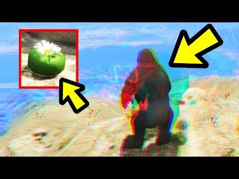 GTA 5 - This Easter Egg is HUGE!! (Peyote Plant Secret)