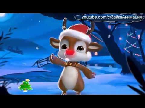 ZOOBE зайка Поздравление С Рождеством ! - Ржачные видео приколы