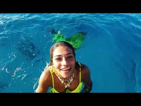 Miss Mermaid 2017 Snorkeling Tour at Red Sea in Saudi Arabia