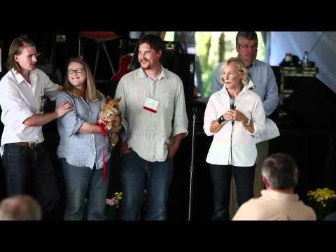 international mental health research organization: music festival video