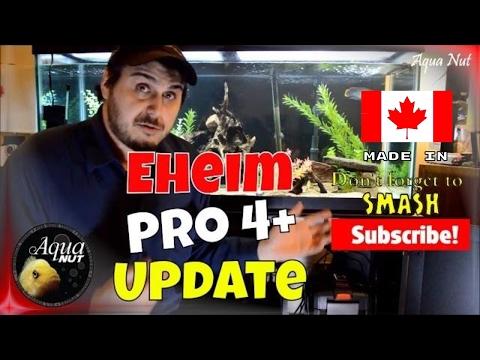Eheim Pro 4+ Canister Filter Update | Eheim Professionel 4+