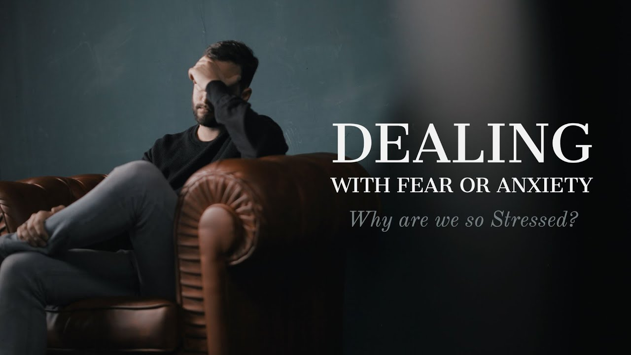 Dealing With Fear or Anxiety: Why Are We So Stressed?