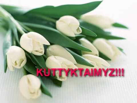 Newcastle Kazakhstan Society 8 марта