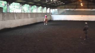 Dressage Lesson with Jane Bartle Wilson