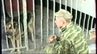 """Питомник """"Красная звезда"""" - клип"""