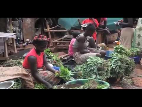 Youth Economic Empowerment in Sierra Leone