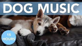 ASMR Music to Relax My Dog! Calming Tones for Stressed Pups!