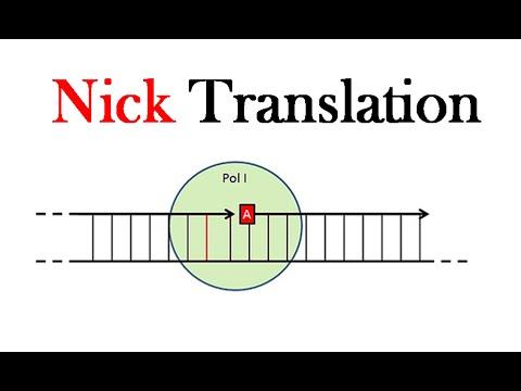 Nick Translation