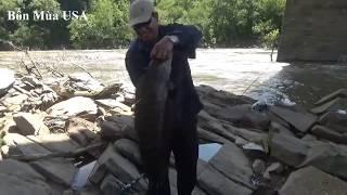 Ở Mỹ 8 Người Ăn Không Hết 1 Con Cá Lóc