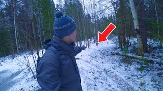 I met a dog in the forest, and that's what happened next ...