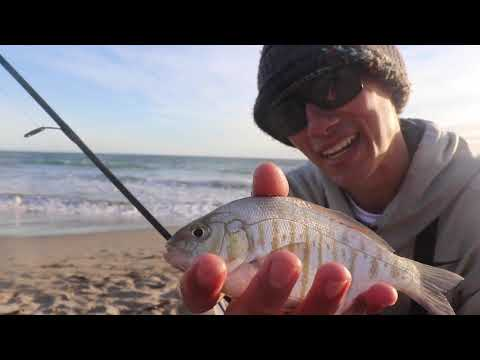 The EASIEST WAY To CATCH FISH IN THE SURF