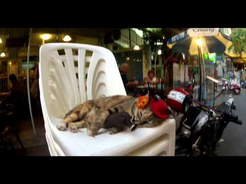 VLADIS feat. NICOLE - Žijem pre moment (OFFICIAL VIDEO)