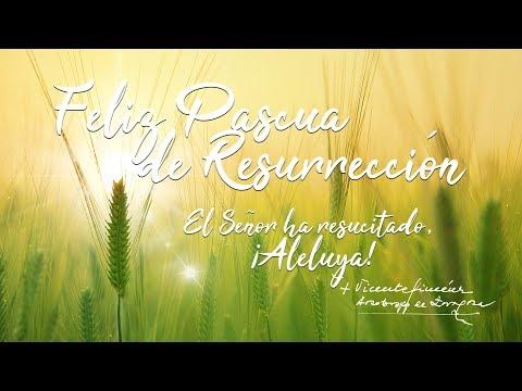 Saludo de Pascua de D. Vicente Jiménez Zamora