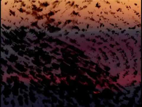 David Sylvian - The Scent Of Magnolia