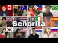 Who Sang It Better : Shawn Mendes - Señorita ( From 12 different countries)