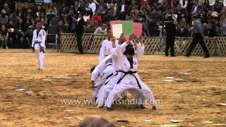 Taekwondo demonstration at Hornbill festival 2013