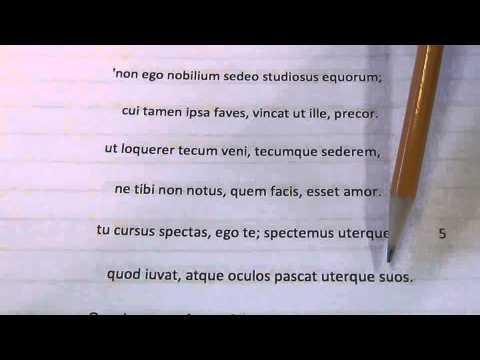 Ovid Amores 2,6 - Corinna's dead parrot (Psittace, Eois..) Elegiac ...