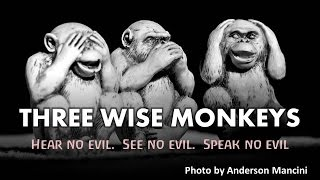 The Three Wise Monkeys (Hear no evil, See no evil, Speak no evil)