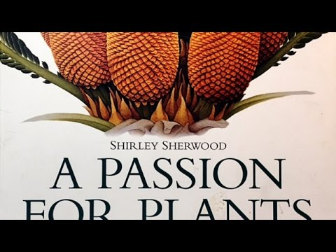 Botanical Art and Lettering Books