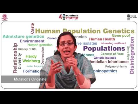 Genetic polymorphisms (ANT)