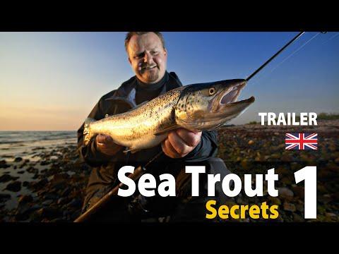 UK Vers. Sea Trout Secrets 1 Spin Fishing