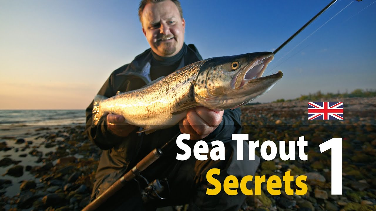 uk vers. sea trout secrets 1 spin fishing - youtube, Fly Fishing Bait