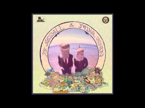 Ty Segall & Mikal Cronin - Reverse Shark Attack (Full Album)