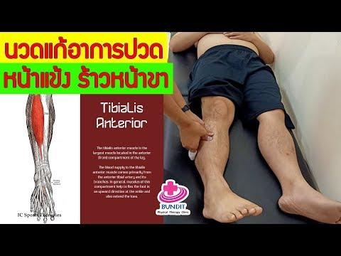 วิธีนวดแก้อาการปวดหน้าแข้ง tibialis anterior