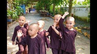Hình ảnh cực dễ thương của 5 chú tiểu tham gia thách thức danh hài đạt 100 triệu
