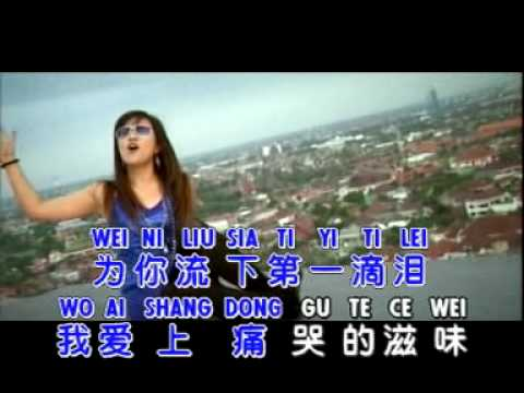 DI YI DI LEI 第一滴泪 - Huang Jia Jia 黄佳佳