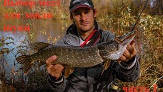 Выбор мест для ловли щуки осенью на малой реке. Отчет о рыбалке. Часть 1.(В начале осени щука очень активна, но найти ее стоянки не так просто. В видео показаны несколько мест где..., 2015-10-15T08:02:00.000Z)